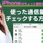 iPhoneで使用したテザリングの通信容量を調べる方法【iPhone使い方講座40限目】