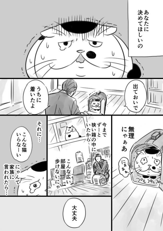 sakurai_umi__2017-6月-20 1