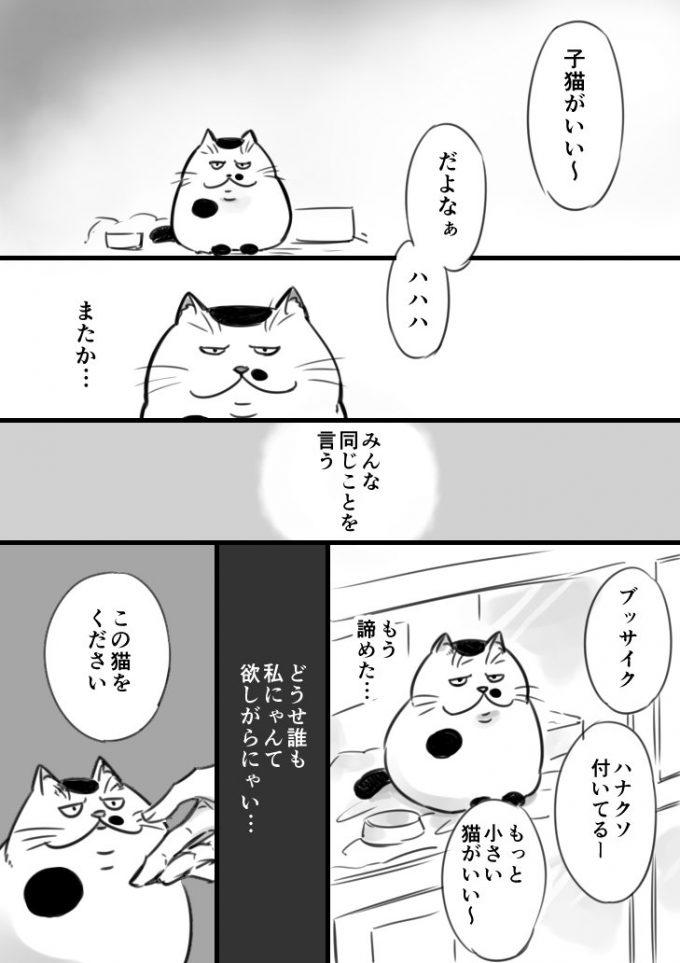 sakurai_umi__2017-6月-12 1