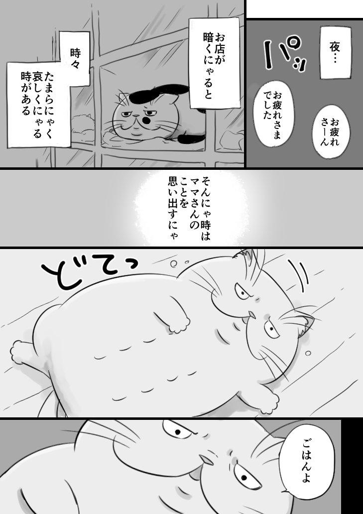sakurai_umi__2017-8月-19