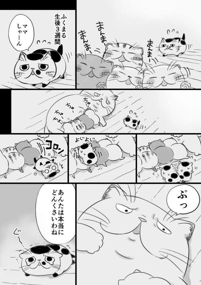 sakurai_umi__2017-8月-19 1