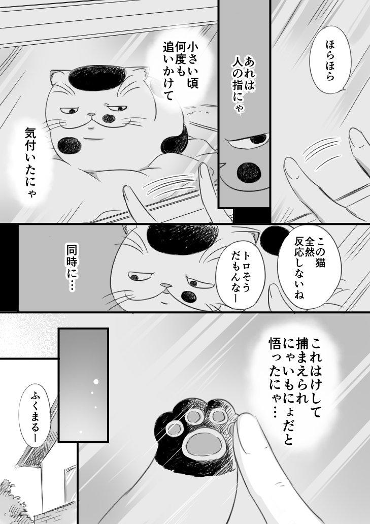 sakurai_umi__2017-Nov-17