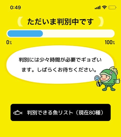 人工知能をつかった魚種判定アプリ「フィッシュ」06
