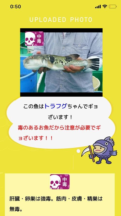 人工知能をつかった魚種判定アプリ「フィッシュ」04