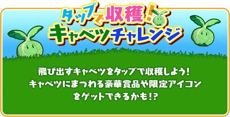 「キャベツ大収穫キャンペーン」