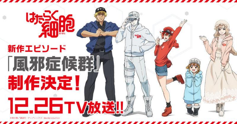 TVアニメ「はたらく細胞」新作エピソード「風邪症候群」