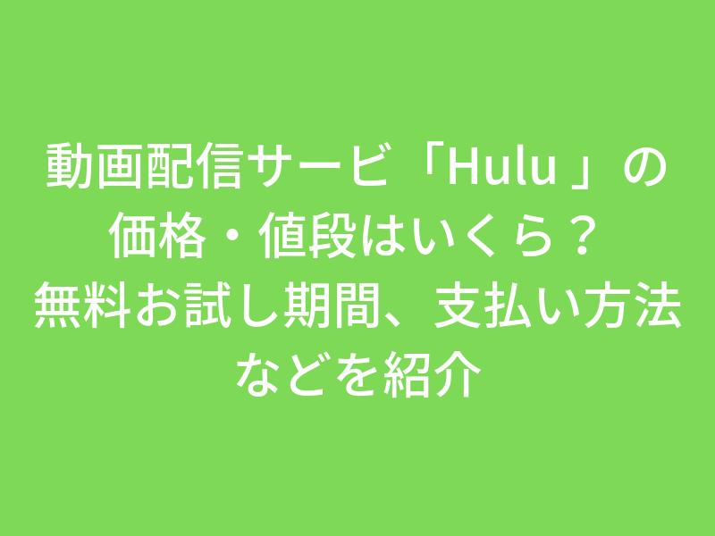 動画配信サービス「Hulu_」の価格・値段はいくら?無料お試し期間、支払い方法などを紹介